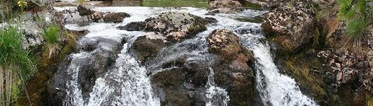 Severn Breaks its Neck Falls, Hafren Forest